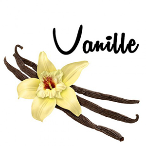 forice-vanille